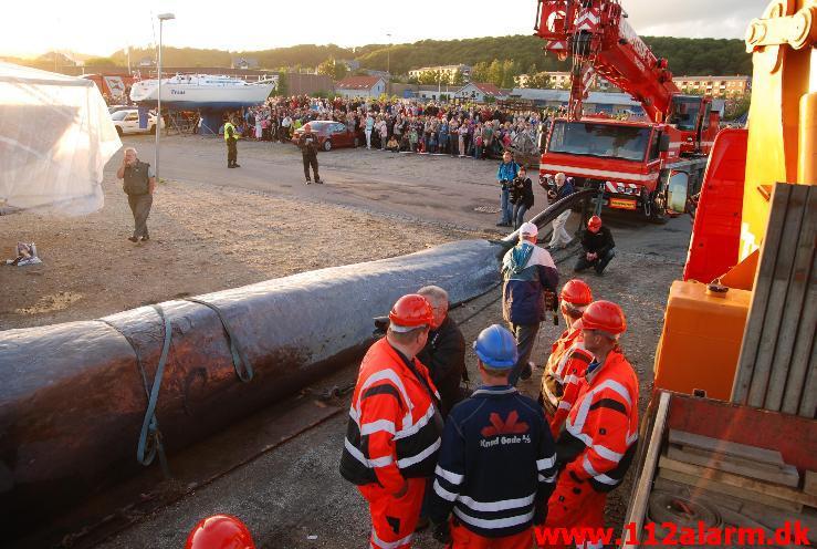 hvor mange tons vejer en hval