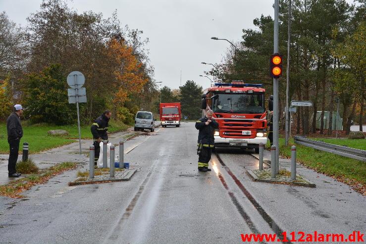 Pullert aflivet en Citroen Berlingo. Moldevej i Vejle. 05/11-2014. Kl. 13:01.