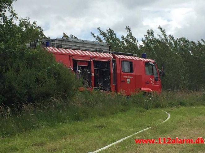 Bilbrand. Roedsvej ved Bølling. 26/06-2017. Kl. 13:11.