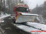 Sneplov på afveje. Vigen Skovvej ved Andkær Vig. 27/02-2018. Kl. 13:46.