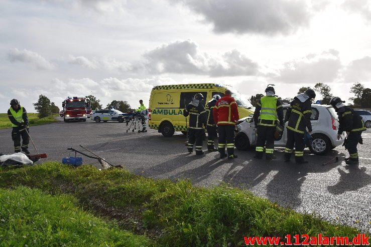 Fuh med fastklemt. Viborgvej ved Hornstrup Kirkeby. 12/09-2018. KL. 16:22.