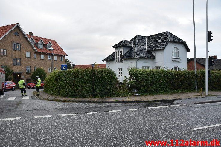 Fuh-Fastklemt. Bøgevang i Vejle. 16/08-2019. KL. 06:40.