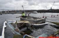 Trekantbrand med til at redde båd. Vejle Lystbådehavn på Stævnen. 22/02-2020. Kl. 13:28.