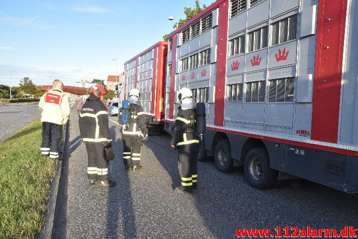 En grisetransport fik varme bremser. Damhaven 13 i Vejle. 07/09-2020. Kl. 18:44.