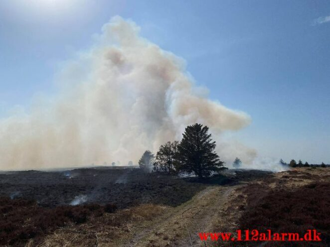 Brand på Randbøl Hede. Frederikshåbvej Randbøl. 17/04-2021. Kl. 15:22.