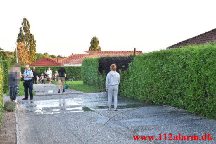 Ukrudtsbrænder satte ild i hækken. Laubsvej I Vejle. 02/09-2021. kl. 19:32.